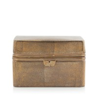 Chest Box Shagreen gold
